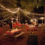 Southern BBQ Party Decorations